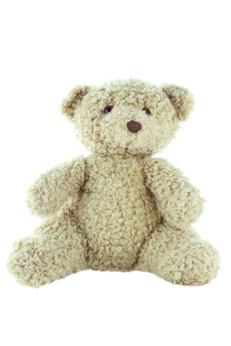 Old teddy bear isolated on a white background with clipping path.
